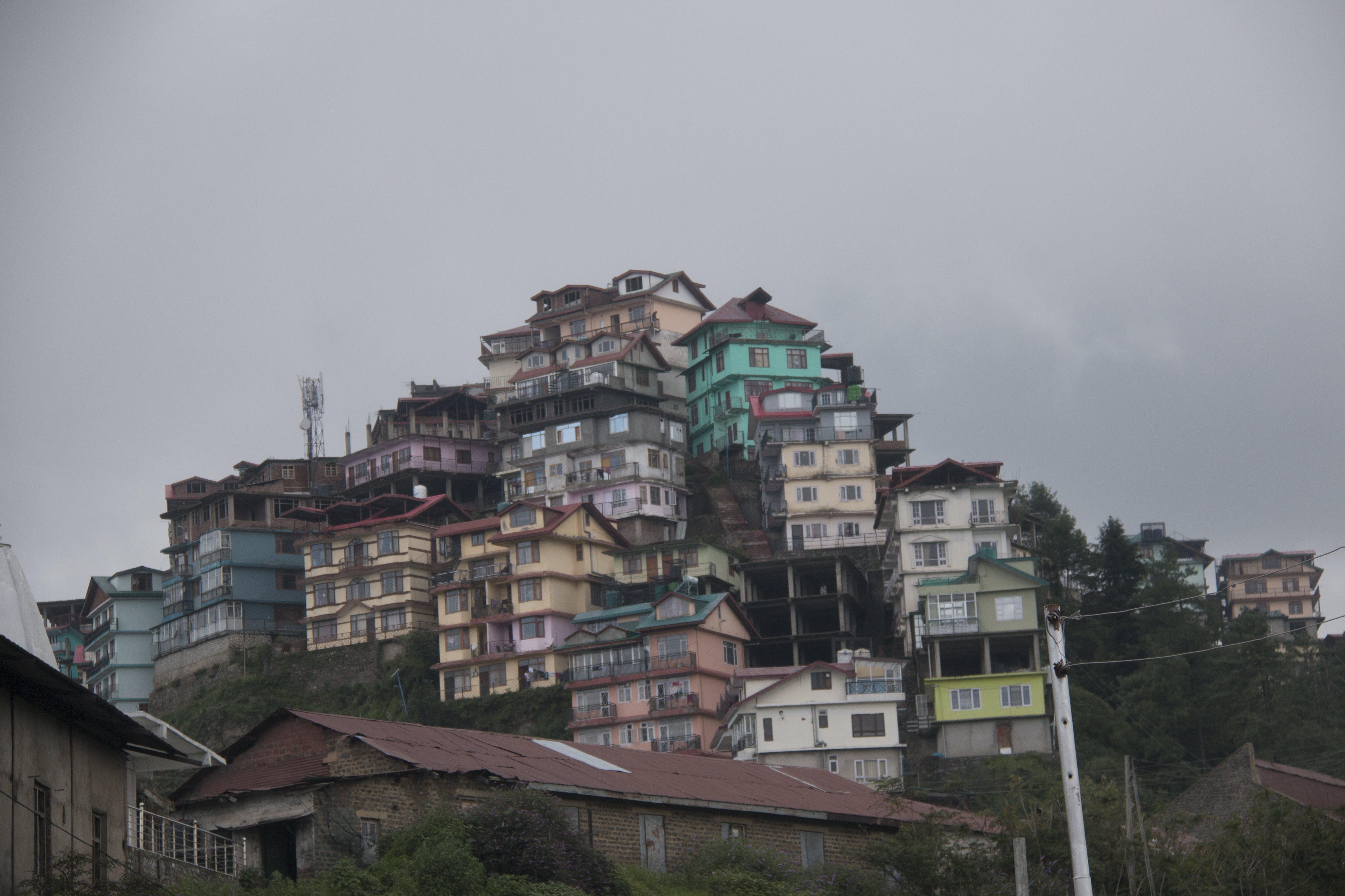 Free stock photo of #shimla #city #india #life #nature #old