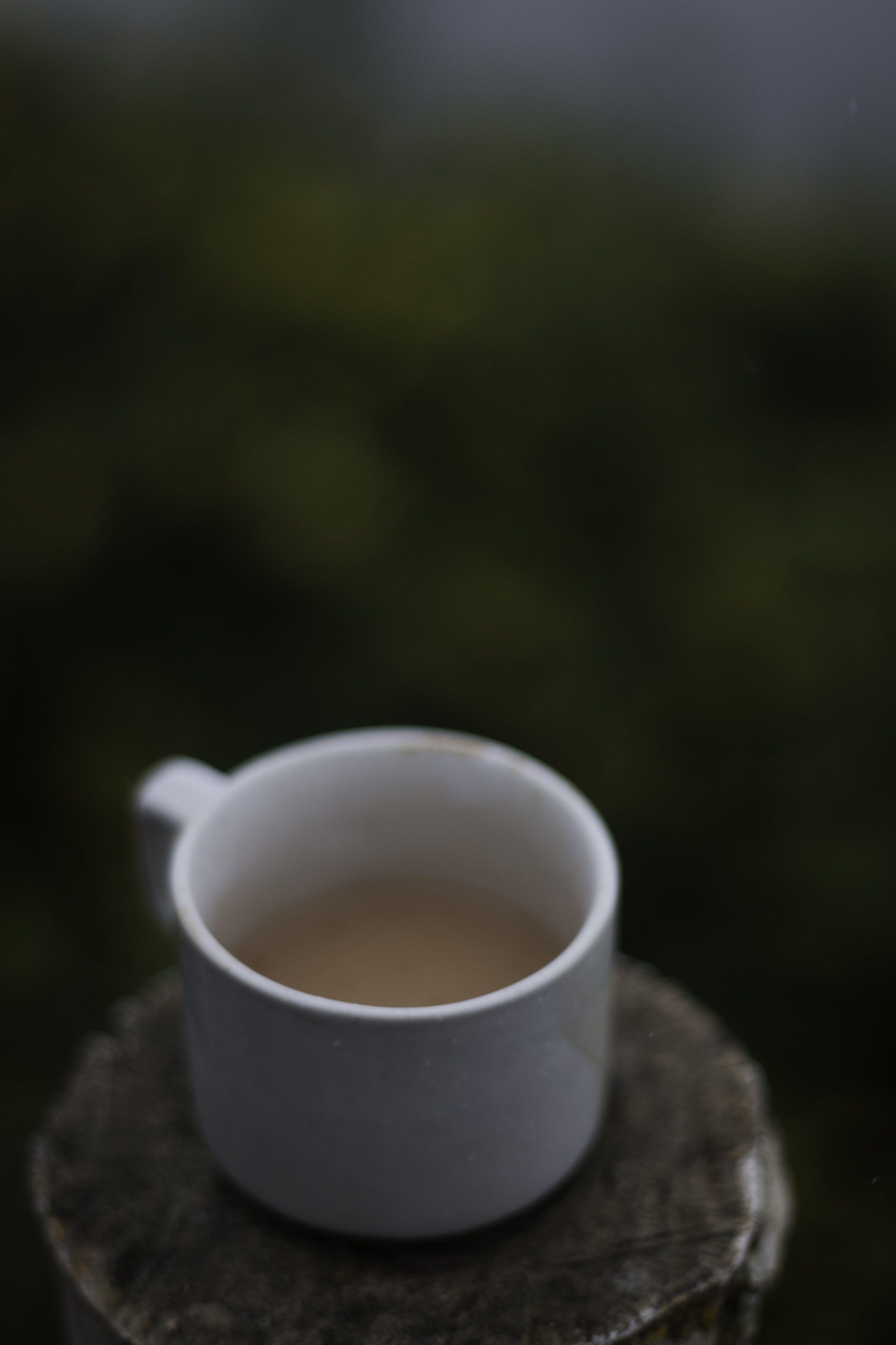 Free stock photo of #tea #cup #mist #fog #nature
