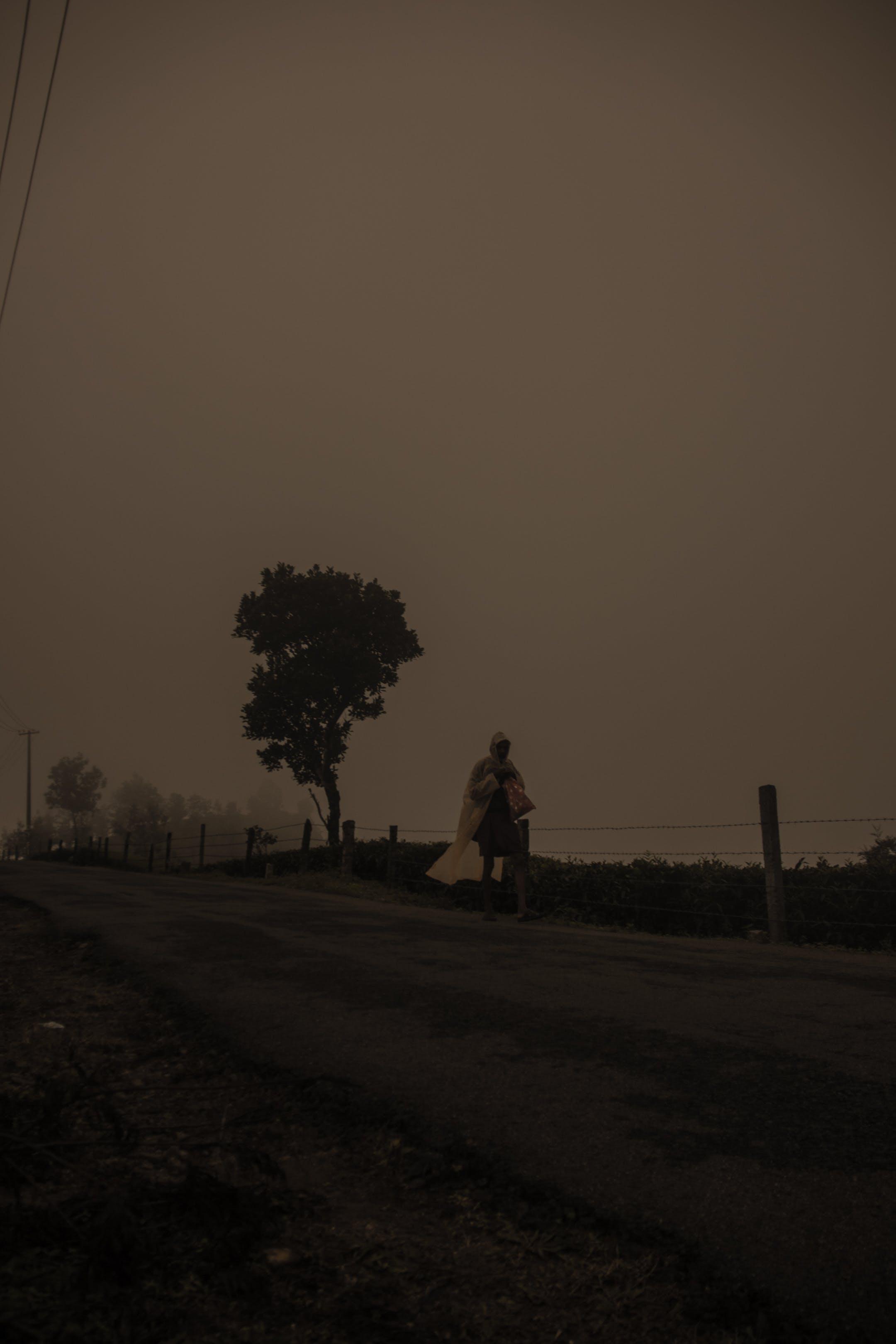 Free stock photo of #fog #man #nature #kerala #vagamon #walking