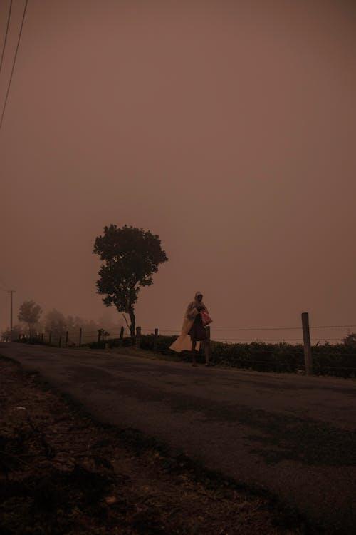 Ảnh lưu trữ miễn phí về #fog #man #nature #kerala #vagamon #walking