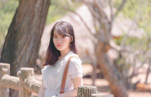 공원, 귀여운, 나무, 레저의 무료 스톡 사진