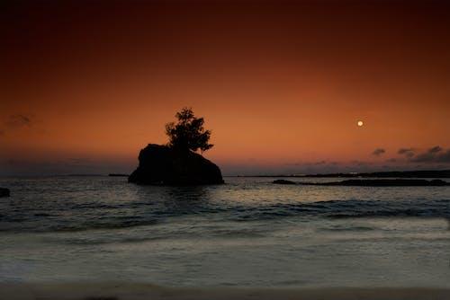 Ingyenes stockfotó hold, hullám, kora reggel, óceánpart témában