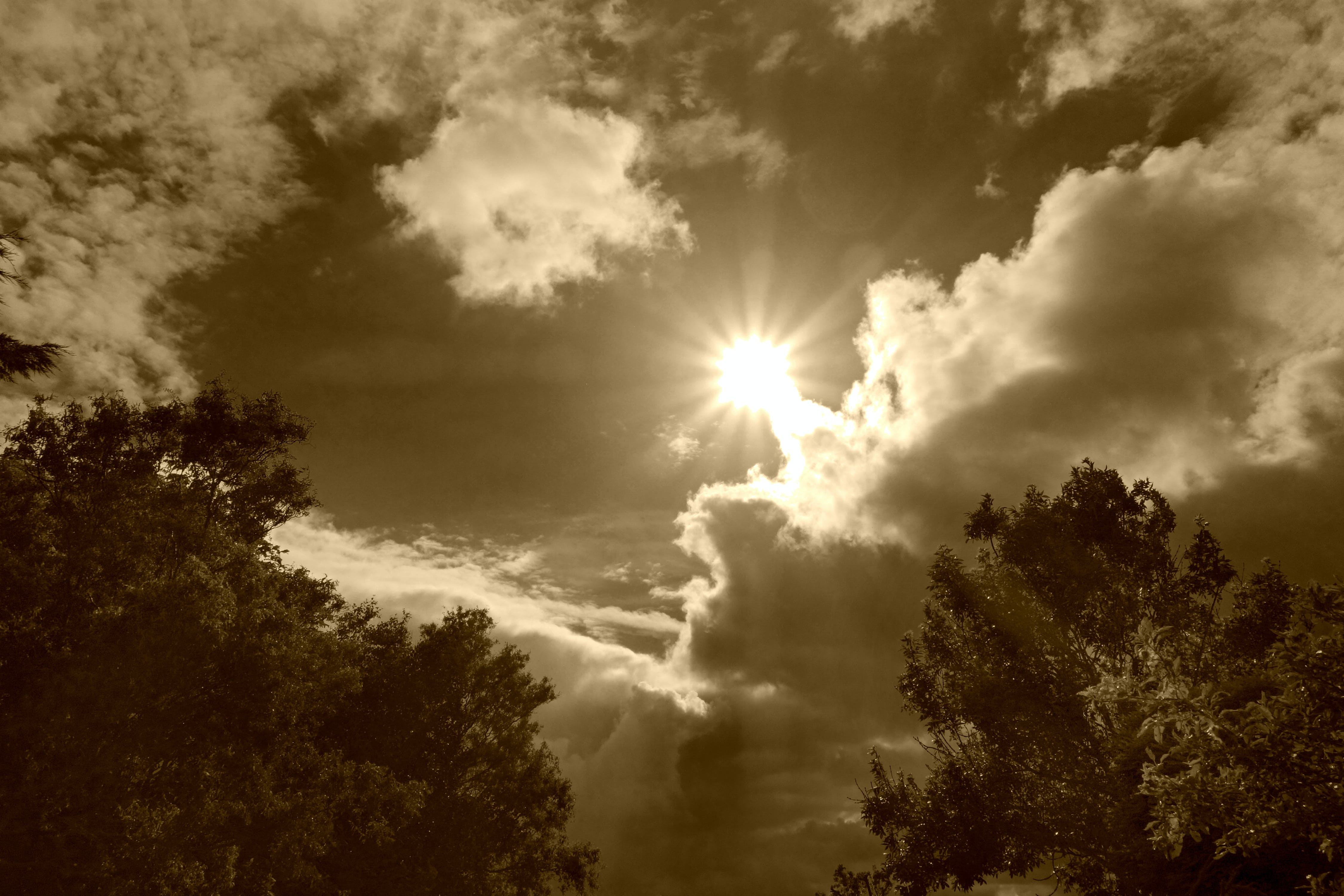Free stock photo of sky, clouds, sun, sepia