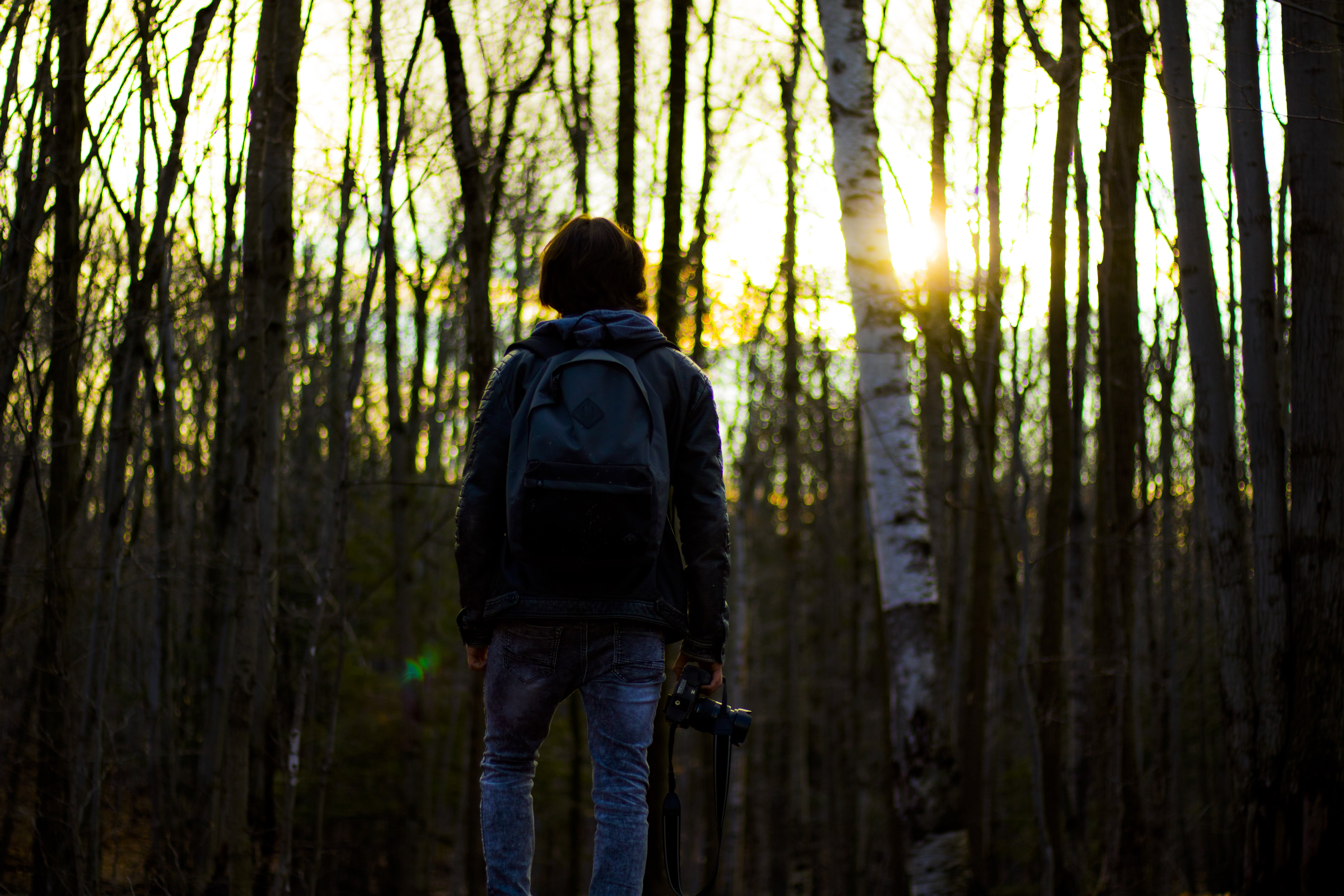 Person in Gray Jacket Wearing Backpack in Forest