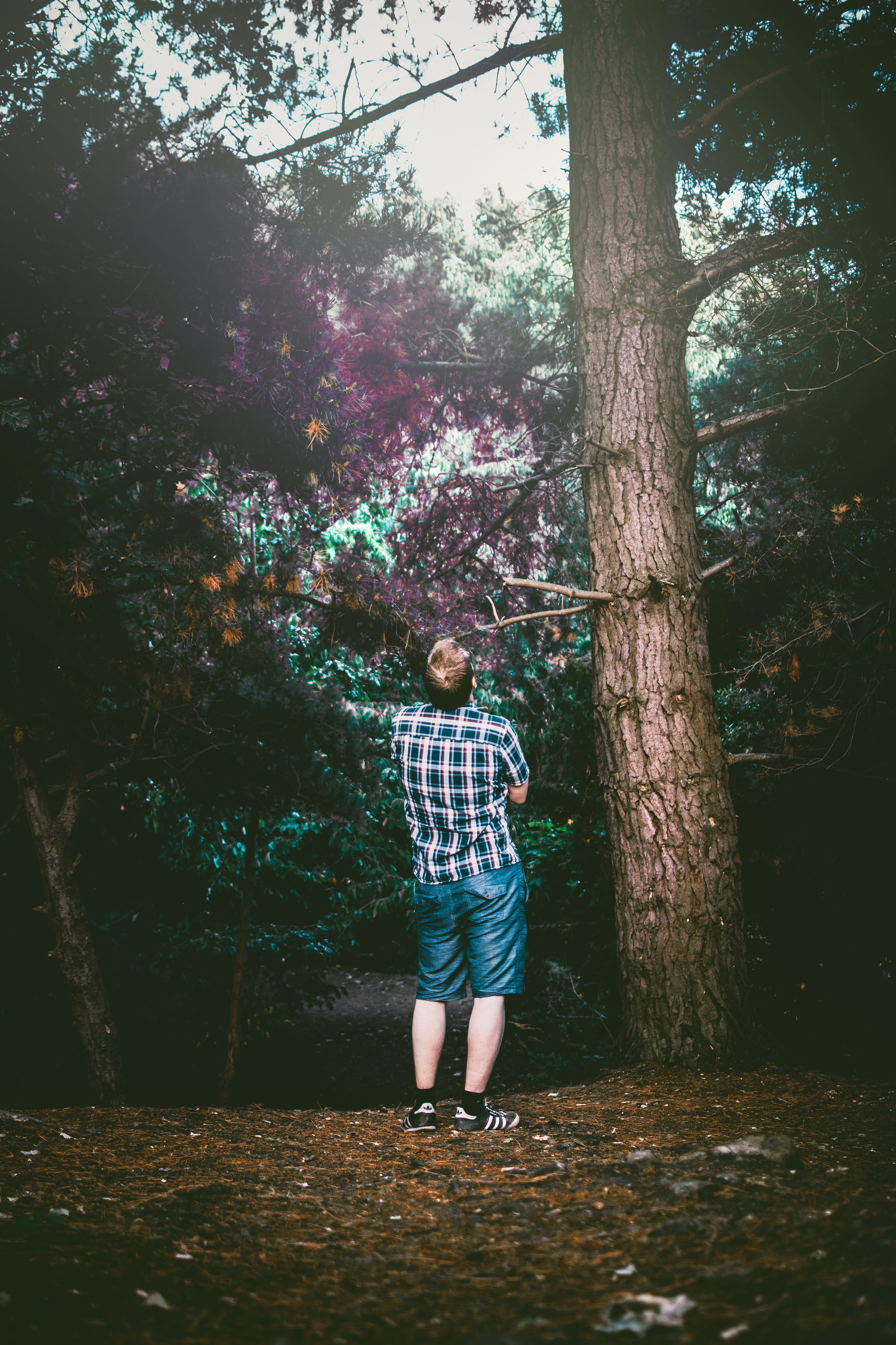 Man Standing and Looking Under Tree