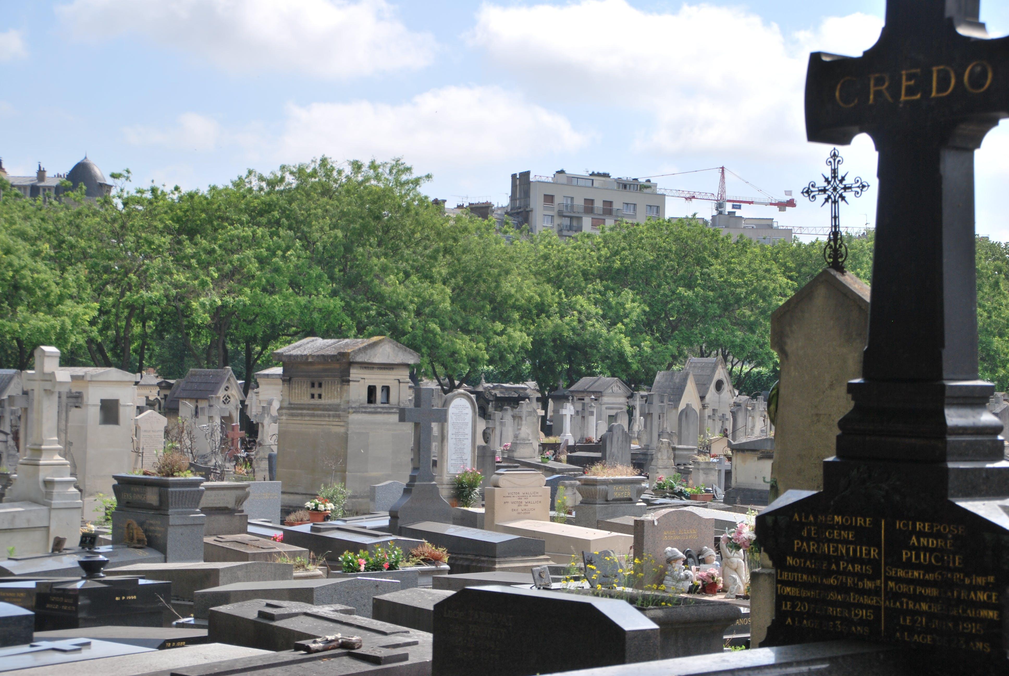 Free stock photo of blurried, blury, cementerio, cementery