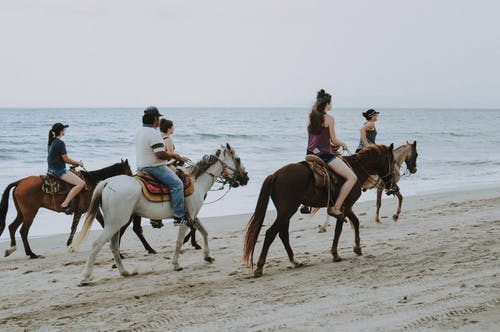People Riding Horses on Beach