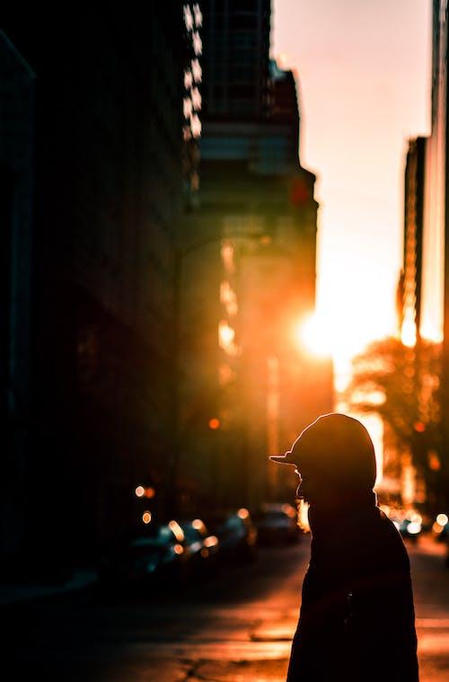 Безкоштовне стокове фото на тему «Вулиця, глибина різкості, з підсвіткою, Захід сонця»