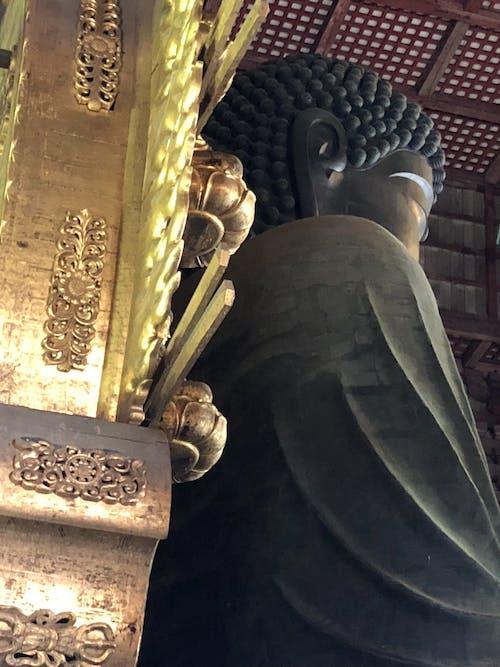 Free stock photo of buddha