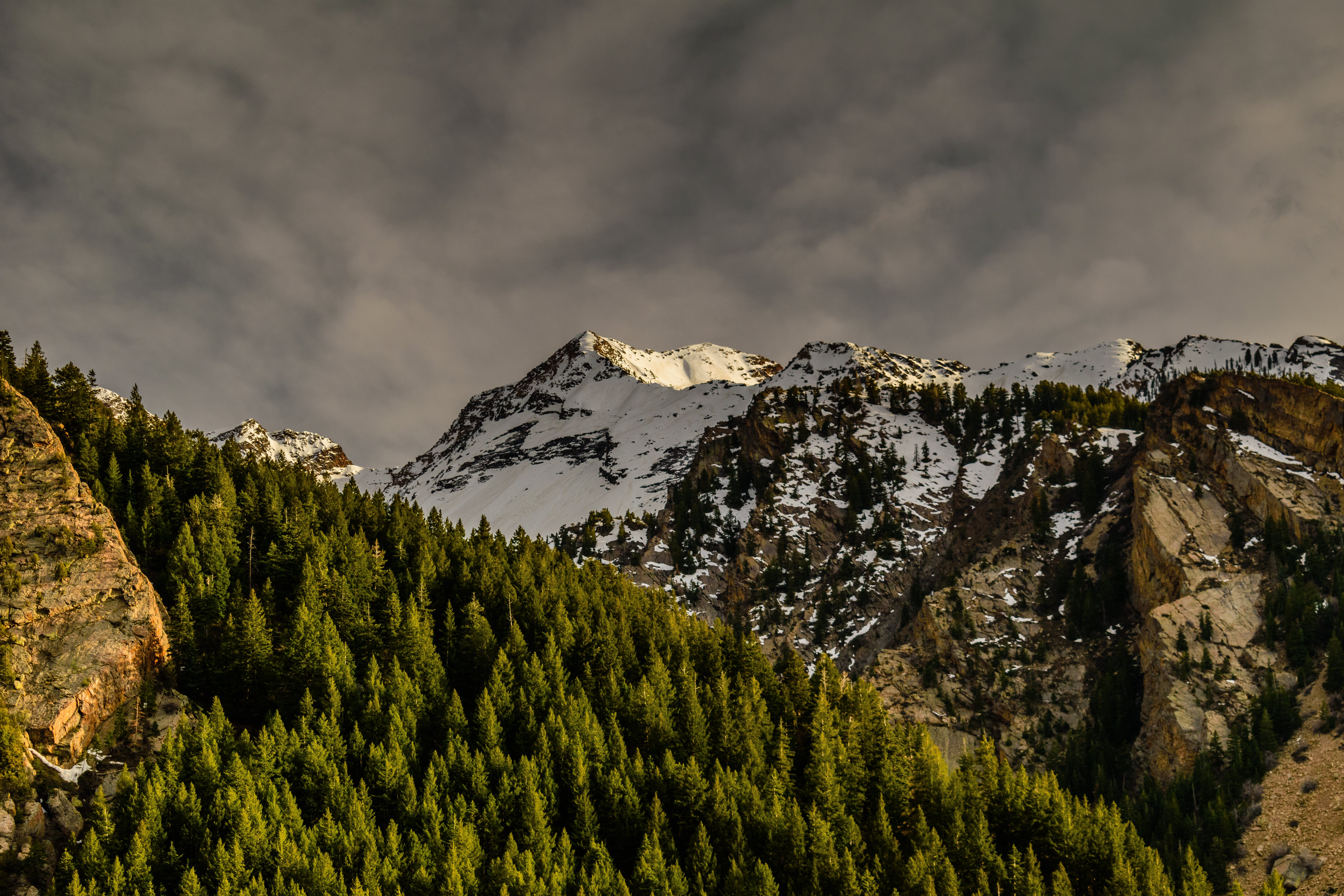 Brown Rocky Mountain Covered With Snow Near Green Trees Under Cloudy Sky