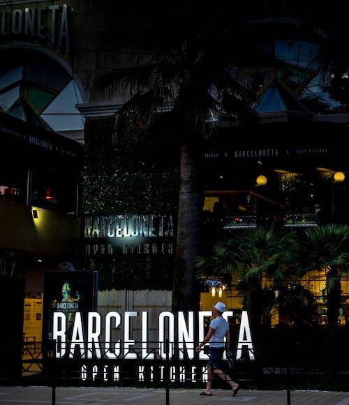 Gratis stockfoto met 's nachts, bar, bar café, bomen