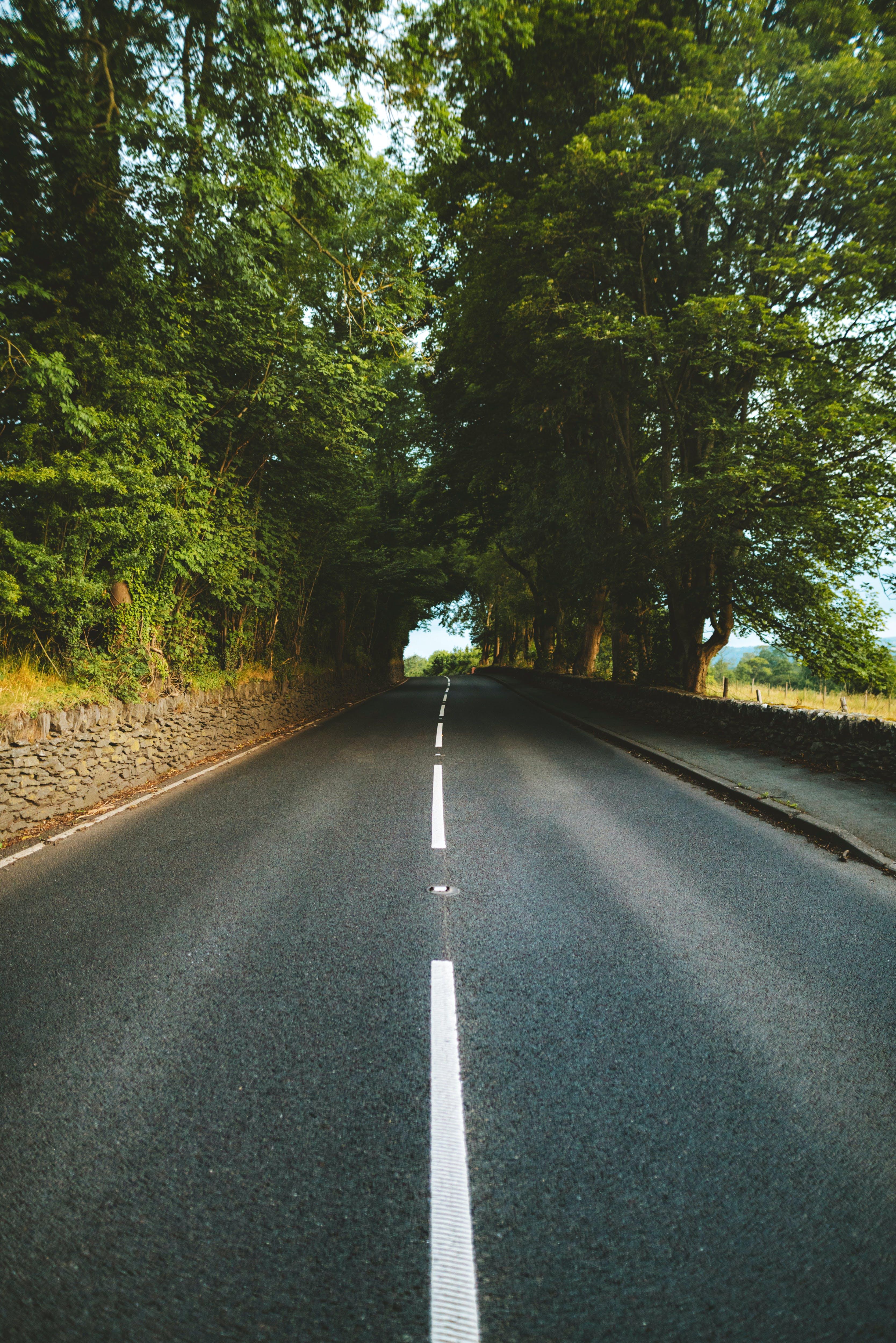 Gratis lagerfoto af asfalt, dagslys, dagtimer, lige