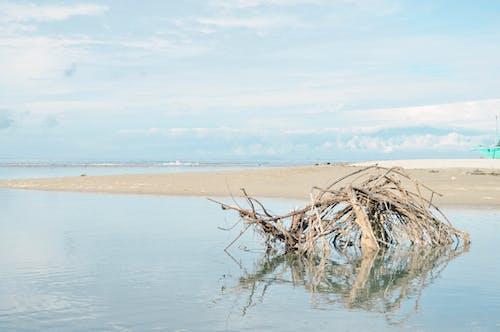 Darmowe zdjęcie z galerii z błękitne niebo, niebieski, plaża, spokojne wody