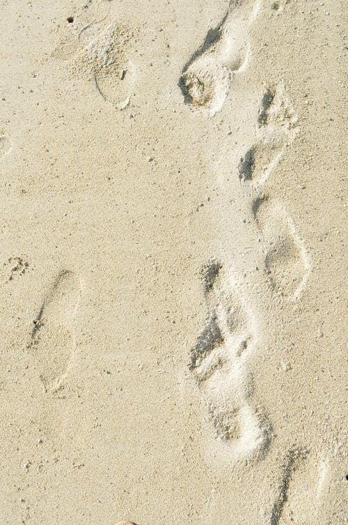 Základová fotografie zdarma na téma písečná pláž, písek, pláž