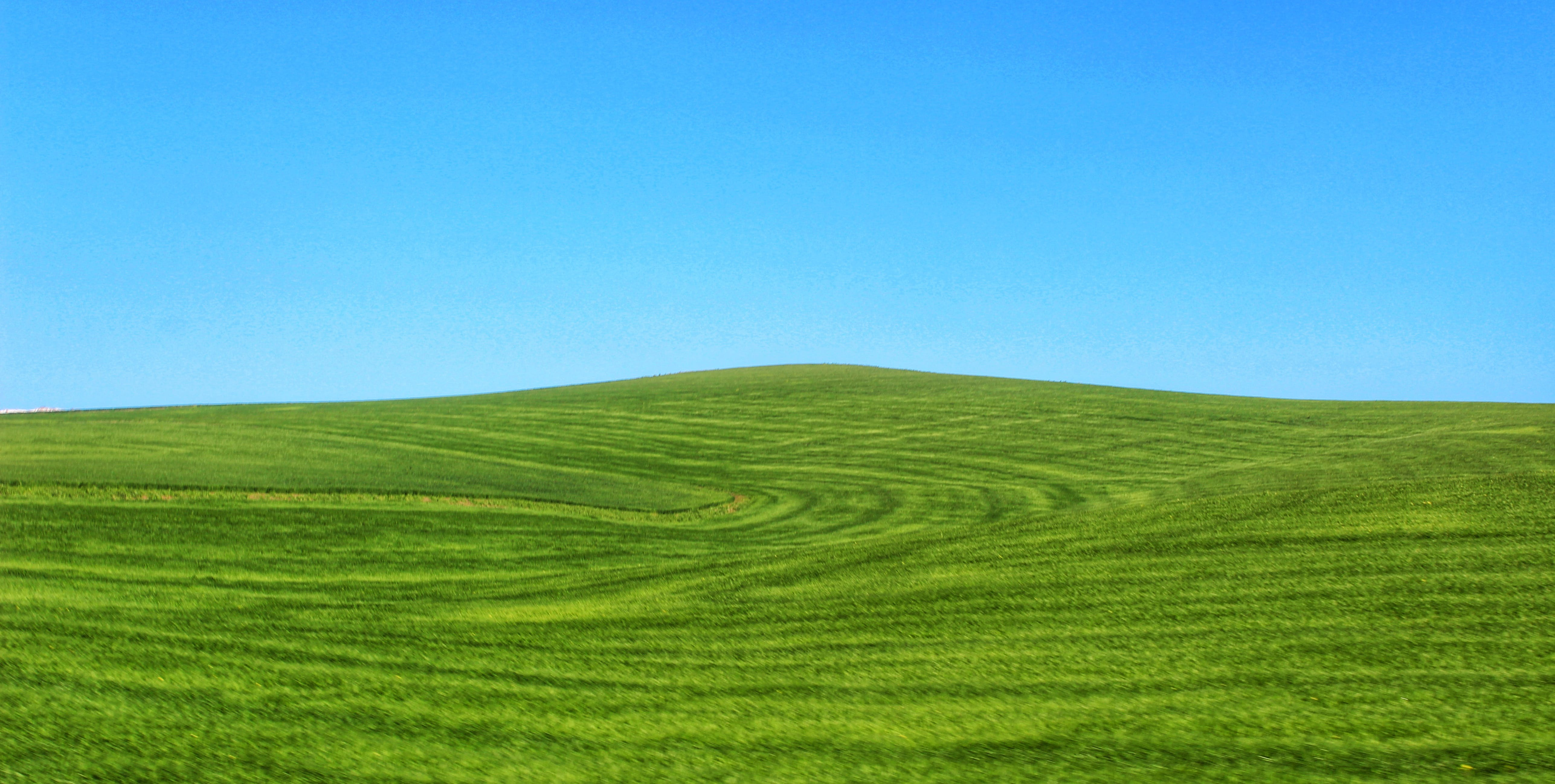 Free stock photo of blue, blue sky, green, green field
