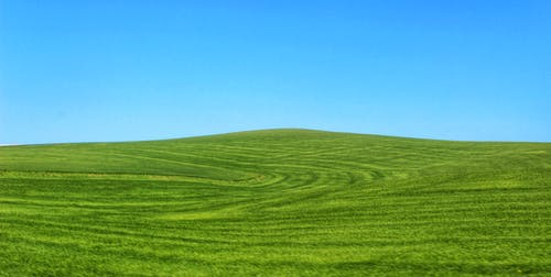 Free stock photo of blue, blue sky, green