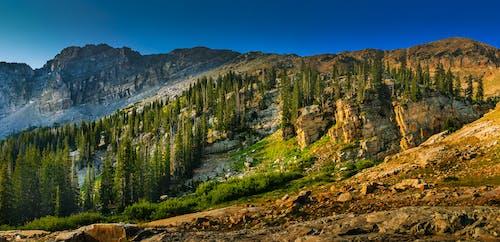 Бесплатное стоковое фото с восход, высокий, гора, горный пик