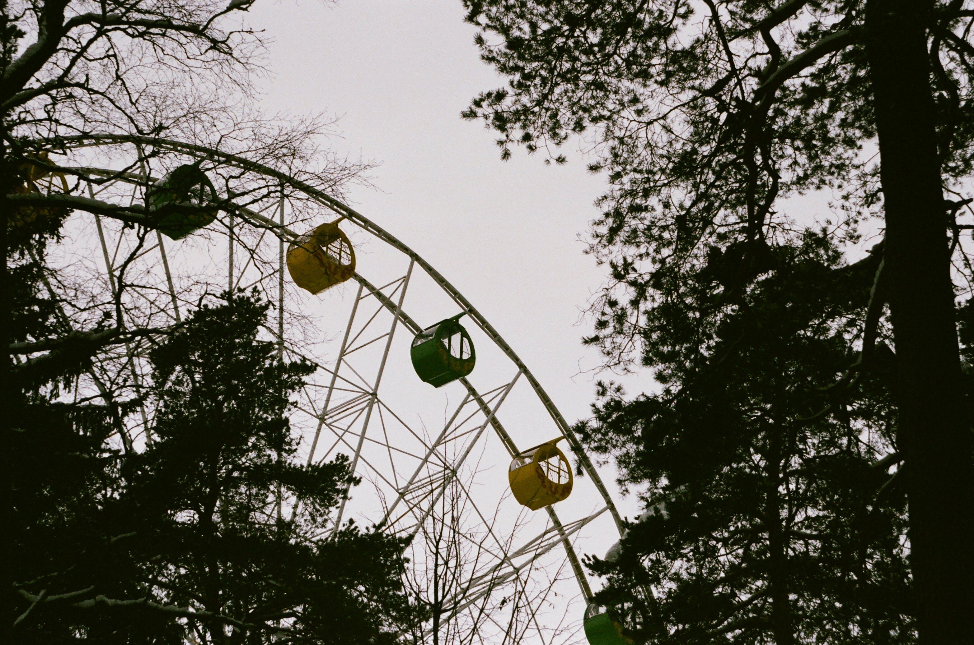 Kostenloses Stock Foto zu landschaft, bäume, park, blätter