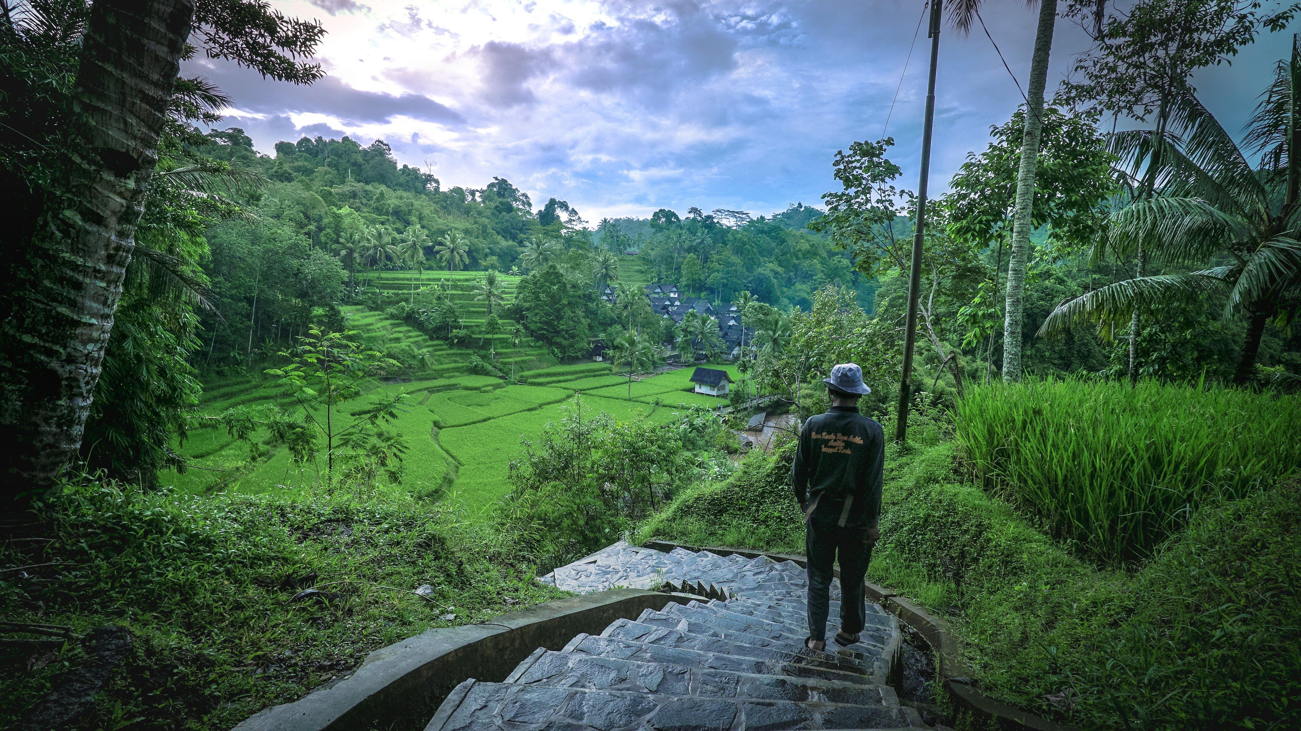 Free stock photo of landscape, nature, man, village