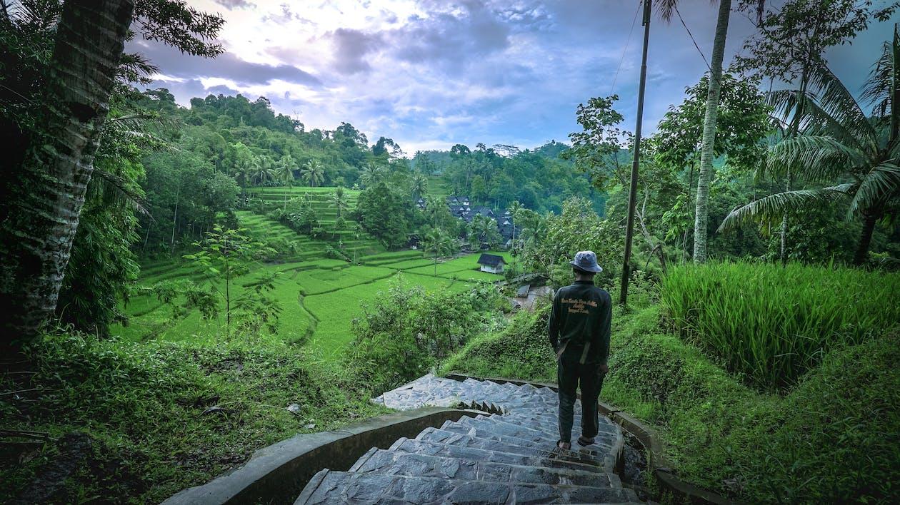 dorp, dorpje, groen