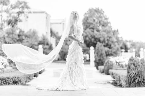 Free stock photo of black and white, bride, brides