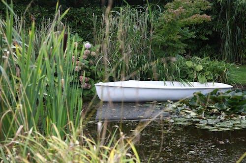 Ảnh lưu trữ miễn phí về thuyền thiên nhiên