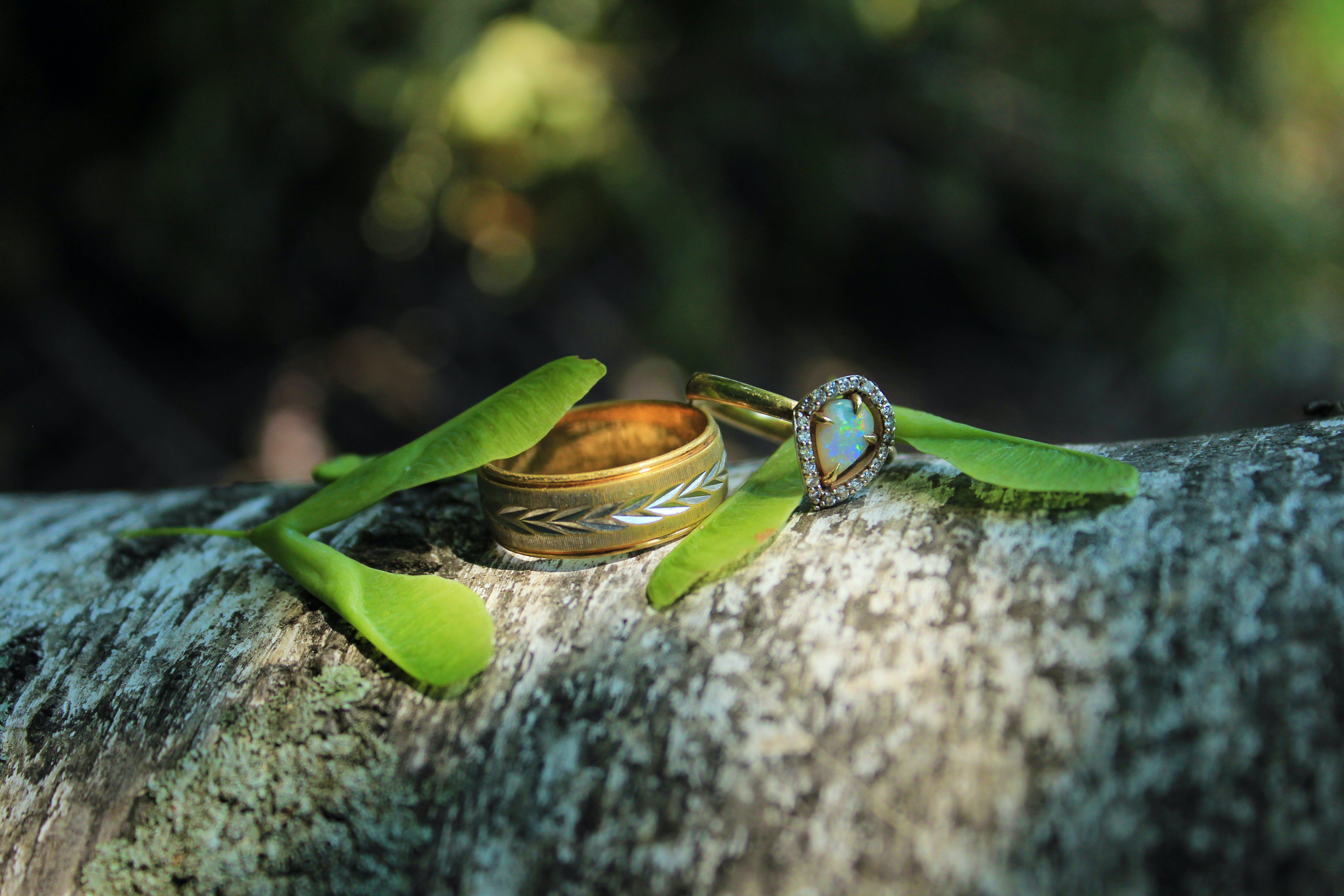 Free stock photo of rings, wedding, ring, engagement