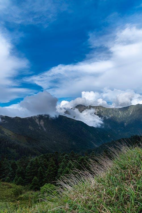 Ingyenes stockfotó felhő, természetes, természetes fény témában