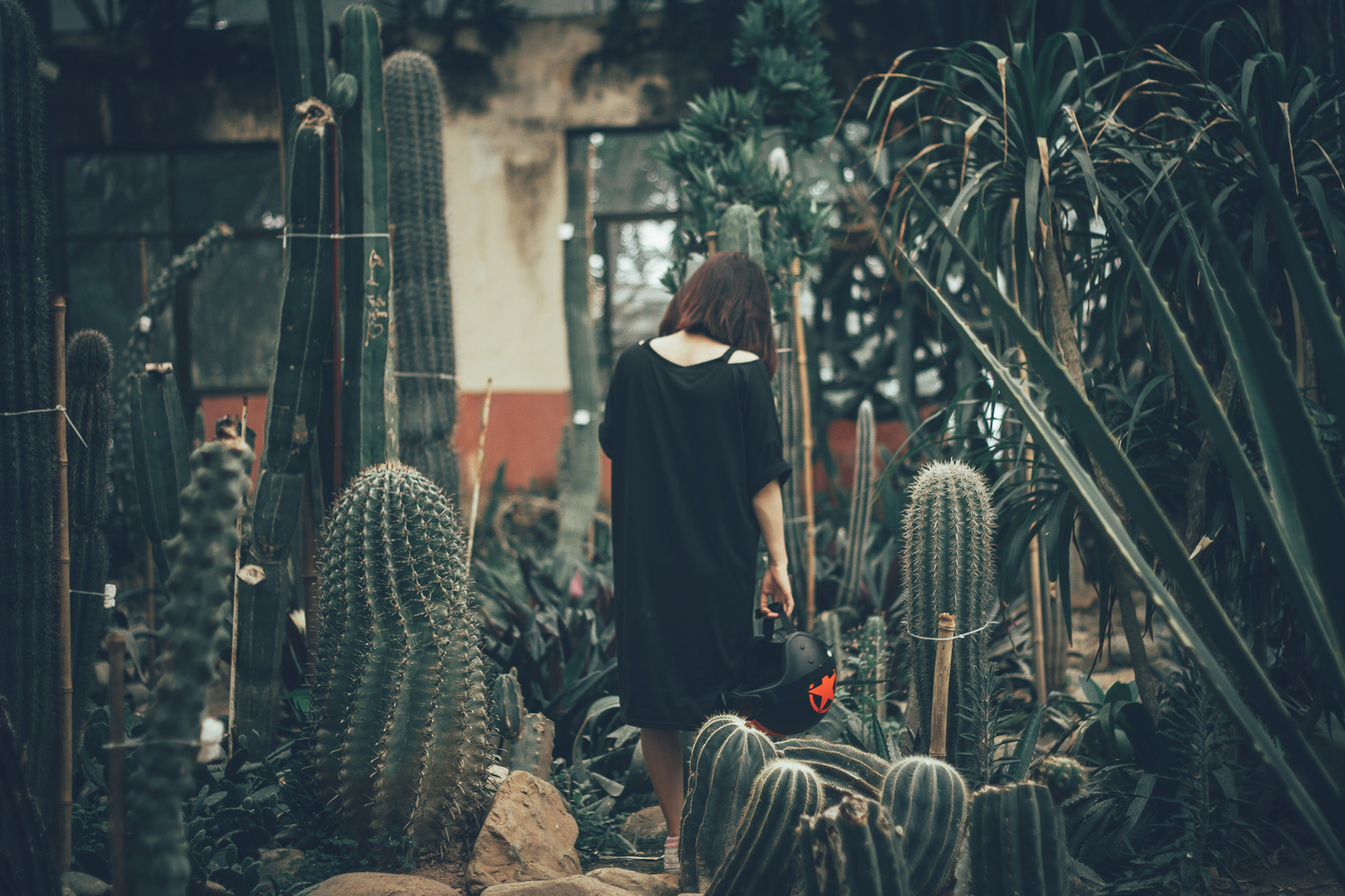 Low Light Photography of Woman in Black Dress Standing on Field Surrounded by Cactus Plants