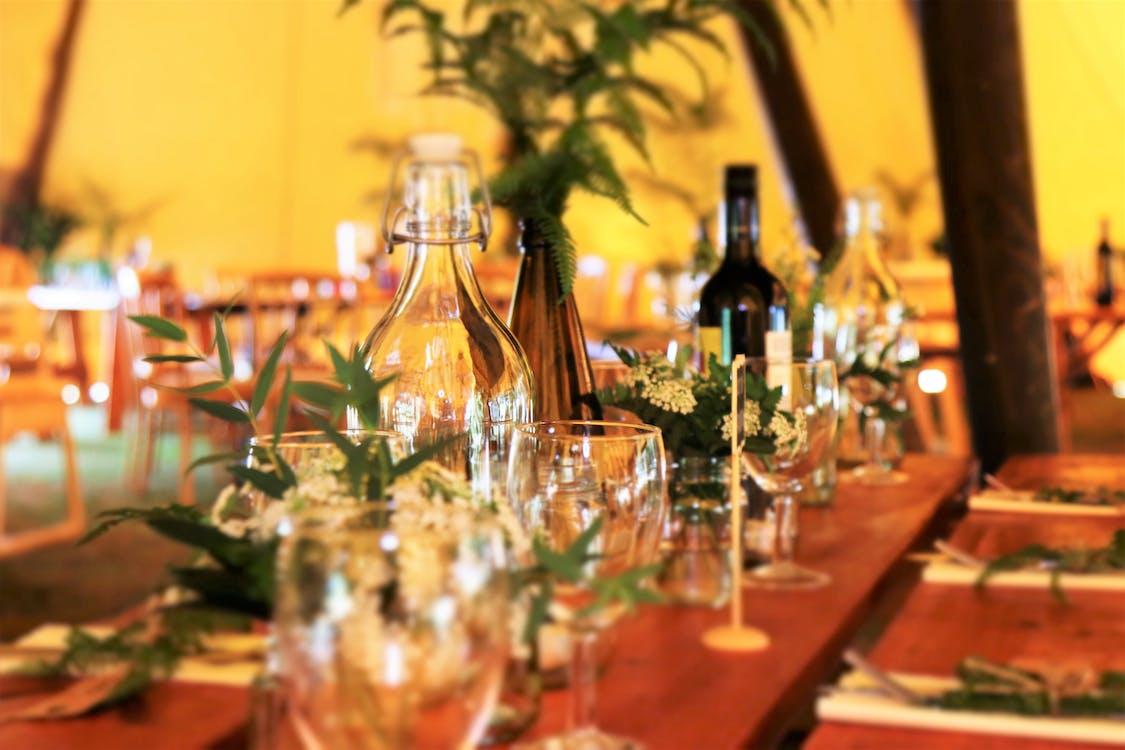akşam yemeği, bar, bitkiler