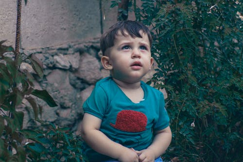 Toddler Wearing Blue and Red Shirt While Standing Near Leafed Plants