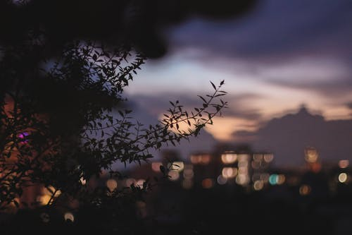 Free stock photo of 50mm, aesthethics, evening, evening sky
