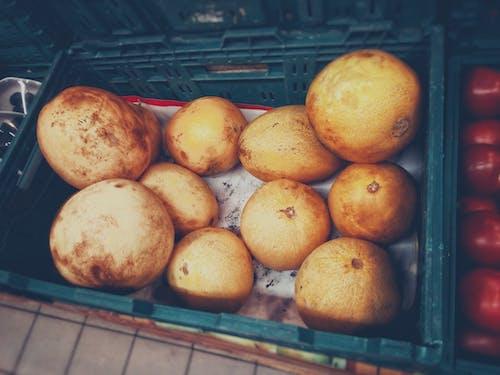 Δωρεάν στοκ φωτογραφιών με κίτρινη, τρόφιμα