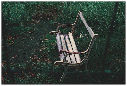 Darmowe zdjęcie z galerii z #minimalist #rain #lonely #color #photography