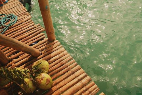 Ảnh lưu trữ miễn phí về bờ biển, dừa