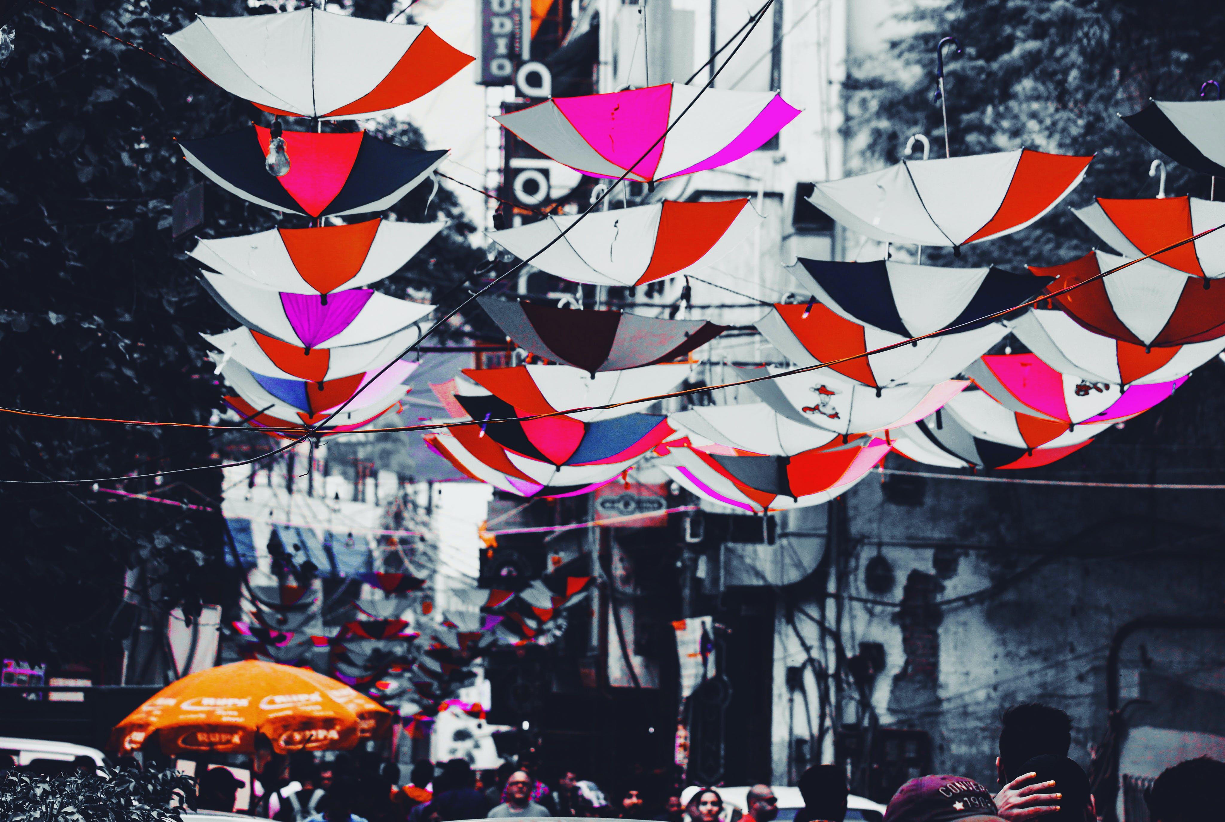 Free stock photo of color, colorful, delhi, festival