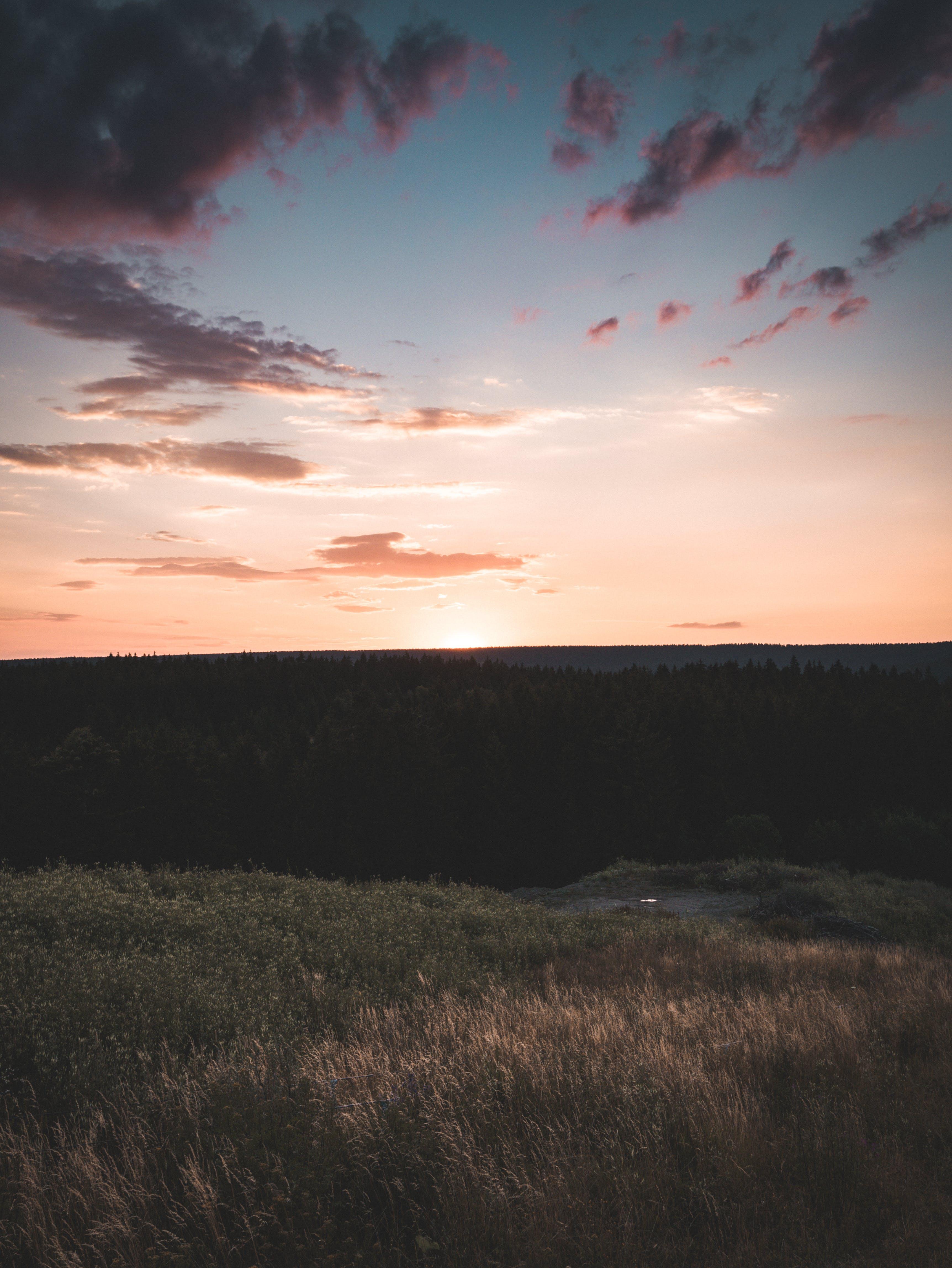 Panoramic Photo of Plains during Sunrise