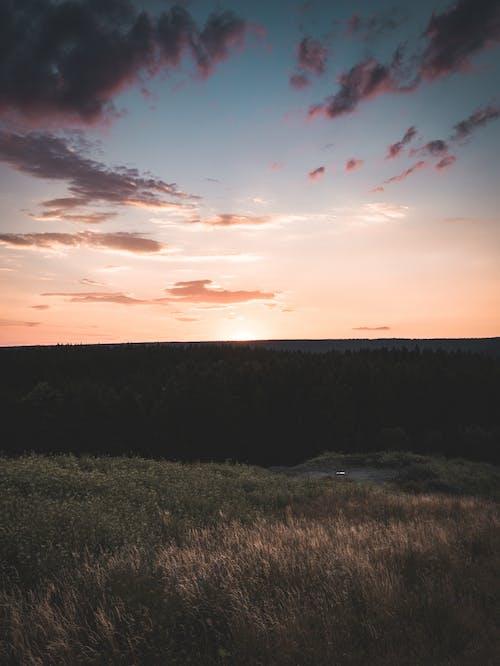 Foto stok gratis alam, awan, backlit, bagus