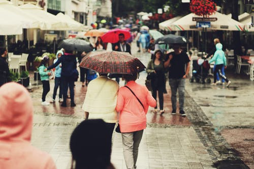 People Walking on the Alley Holding Umbrellas