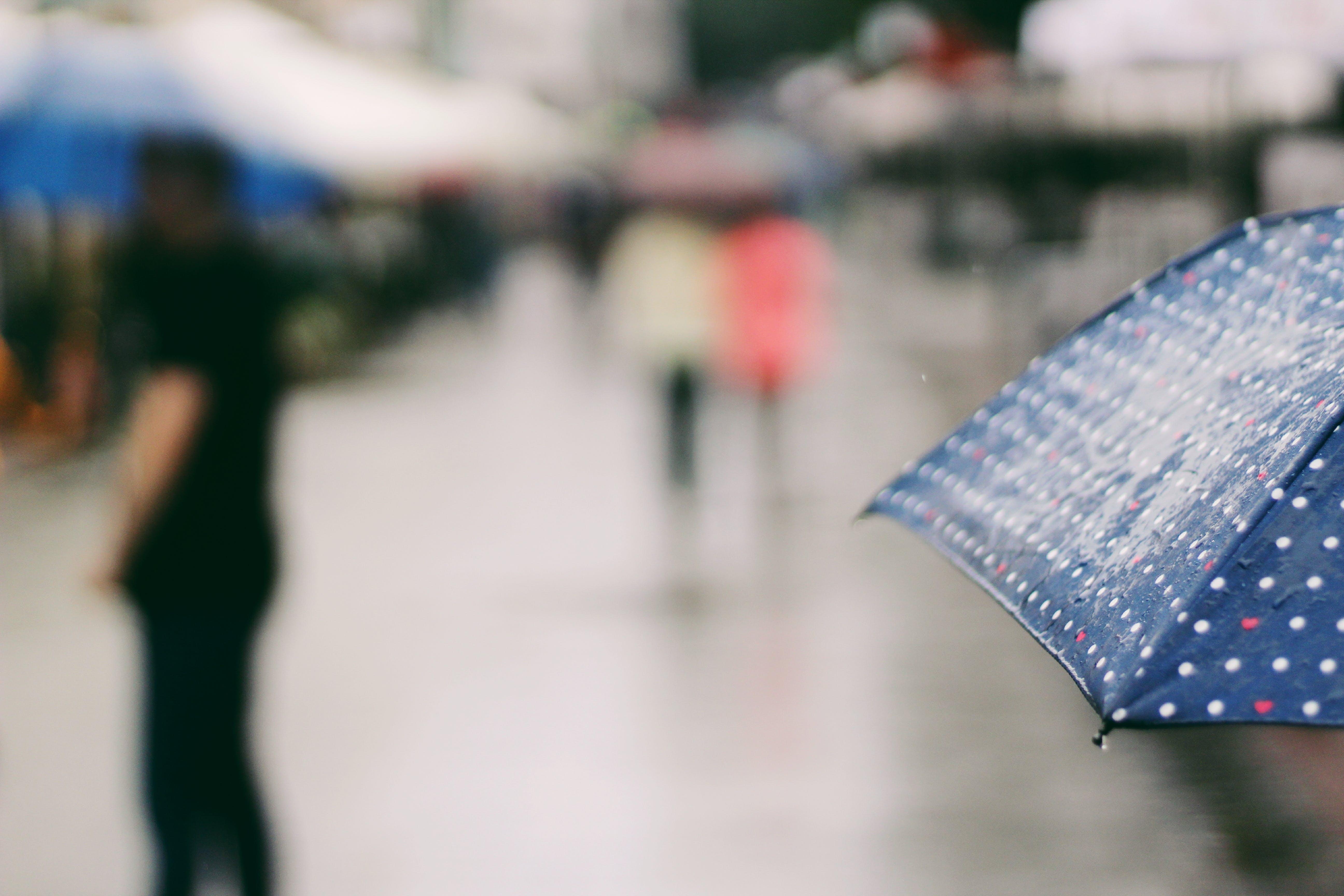 Close Up Photo of Blue Umbrella