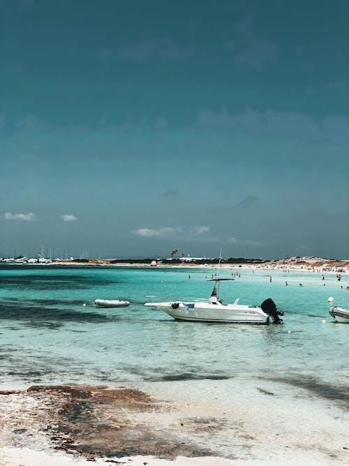 Photos gratuites de amusement, baie, bateau à moteur, bateaux