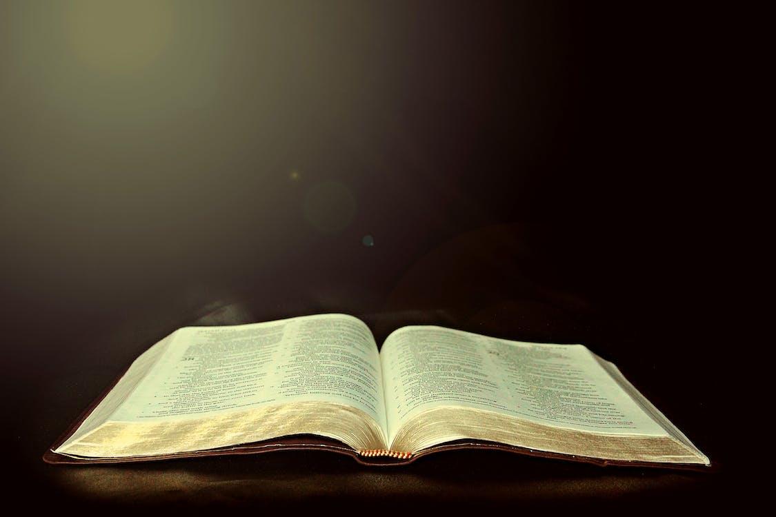 bíblia, cristianisme, estudi de la bíblia