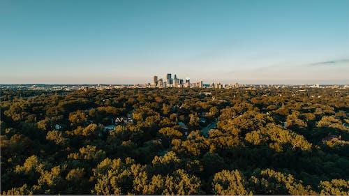 Kostenloses Stock Foto zu bäume, gebäude, himmel, landschaft