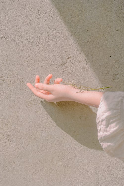 Základová fotografie zdarma na téma cestování, holka, list, osoba