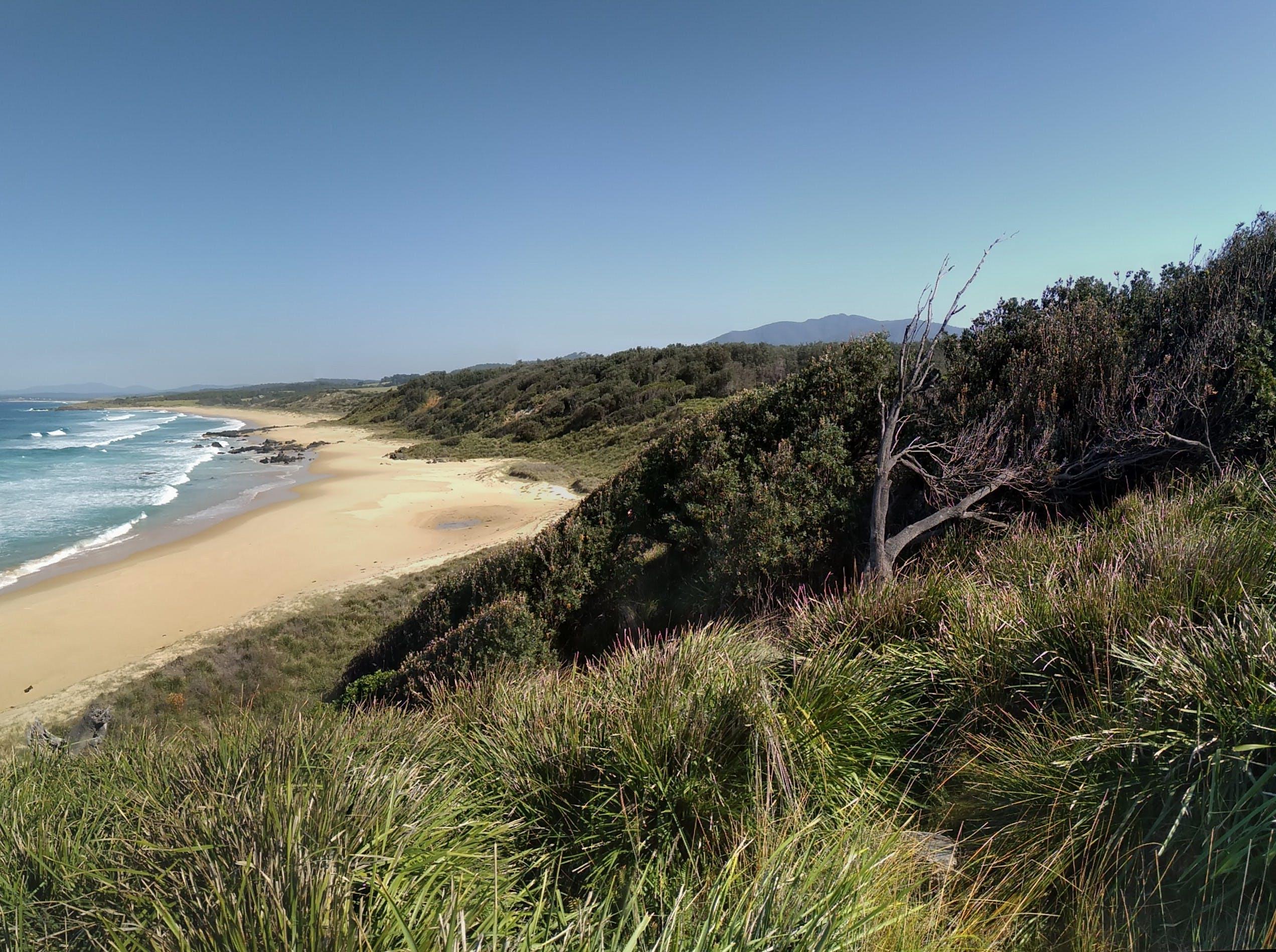 Free stock photo of beach, coast, ocean, wind