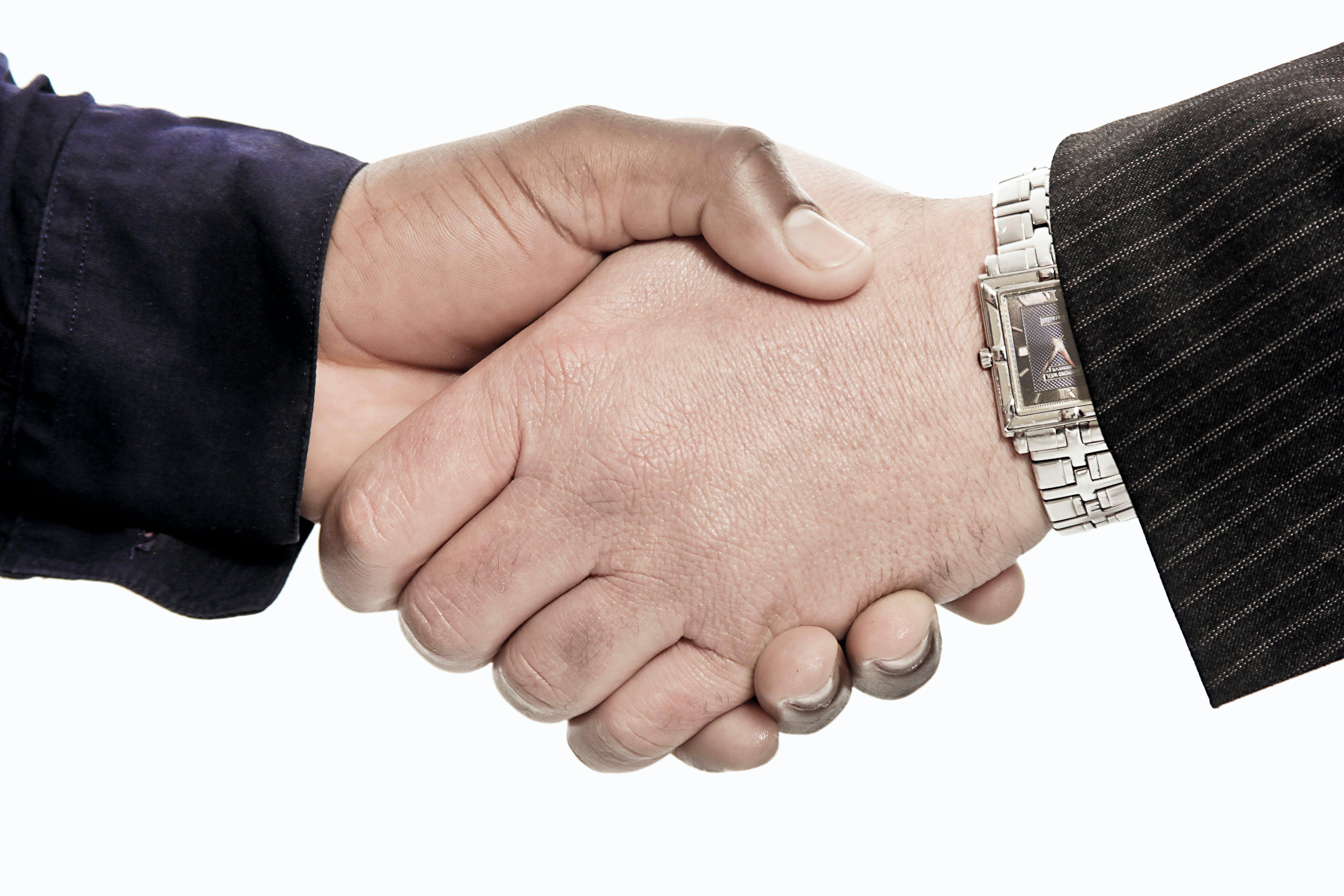 bee, hand shake, hands