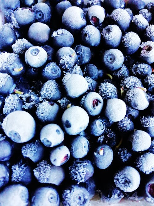 Free stock photo of blueberries, ice crystal