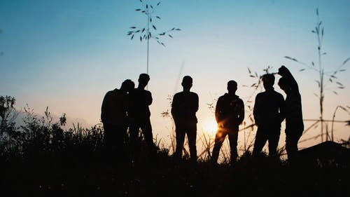 Silhouette Group of People Standing on Grass Field