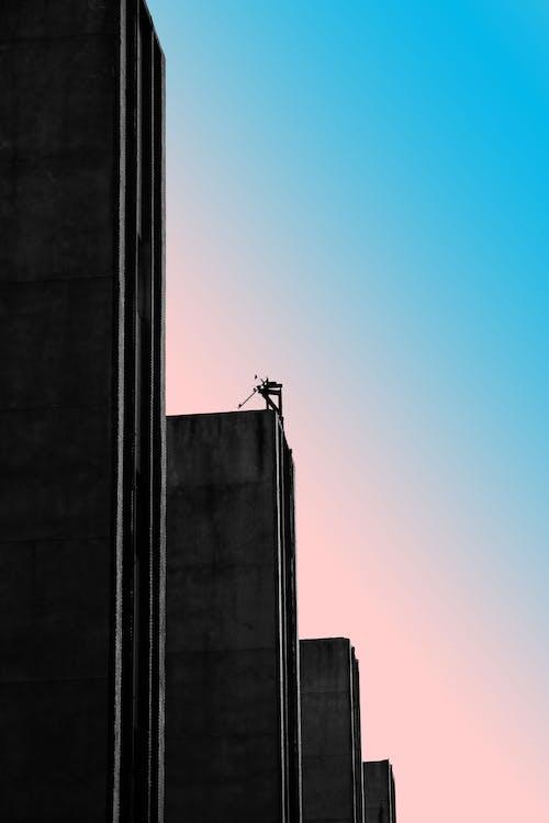 シルエット, モダン, ローアングルショット, 建物の無料の写真素材