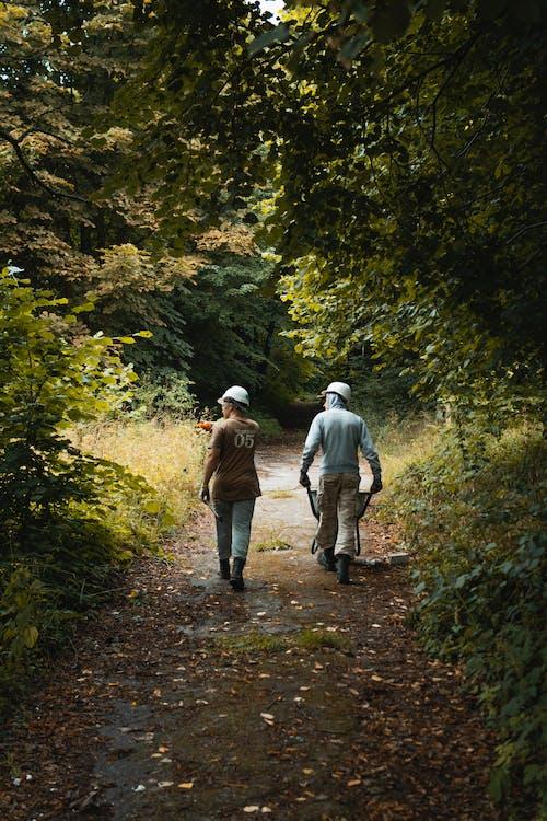 Two Men Walking on Way in Between Trees